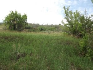 Recent land appraisal in Morrison, CO.